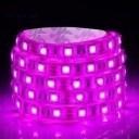 Custom Length Sleeved LED Light Strip - Pink