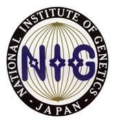 nig-logo.jpg